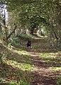 Brockington Lane - geograph.org.uk - 301717.jpg