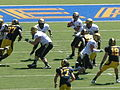 Buffaloes on offense at Colorado at Cal 2010-09-11 9.JPG