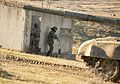 Bulgarian, U.S. tanks roll side-by-side to conclude Platinum Lion 16-2 160114-M-TV331-129.jpg