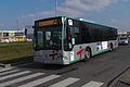 Bus Villabé - 20130222 141839.JPG