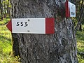 CAI 553 Monte Caibano Segnavia.jpg
