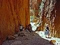 CDonnald Ranges, Standley Chasm - panoramio.jpg