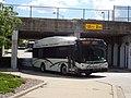 CUMTD 2009 Gillig BRT 29' 0959.jpg