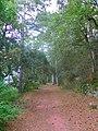 Camí dels frares, prop del castell d'Escornalbou - panoramio.jpg