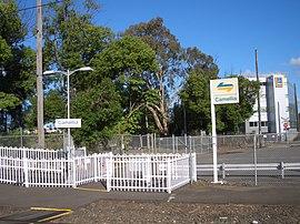 Camellia Railway Station 1