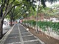 Candelaria,Quezonjf1951 08.JPG