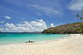 Caneel Bay Turtle Bay Beach 2.jpg