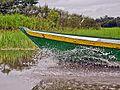 Canoa pelos igapós do rio Negro Manaus Amazonas Brasil.jpg