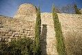 Cardona, castell PM 40404.jpg