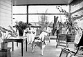 Casal Norte-Americano em sua Residência em Porto Velho - 3, Acervo do Museu Paulista da USP (cropped).jpg