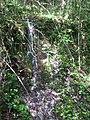 Cascata sulla SC Polvano - Ranchetto - panoramio.jpg