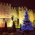Castello dell Imperatore Prato.JPG