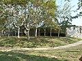 Cementiri (El Cementiri Vell de Poble Nou), BCN-1.JPG