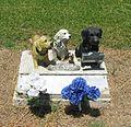 Cemetery Dogs (4765694069).jpg