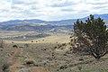 Centennial Park - panoramio (20).jpg