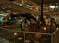 CenterGallery-FirstFloor-PaleozoologicalMuseumOfChina-May23-08.jpg