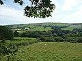 Ceredigion farmland near Tregaron - geograph.org.uk - 901992.jpg
