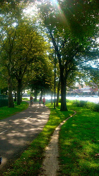Charles River Bike Path - Paved bike path and a footpath on the Boston side of the Charles River