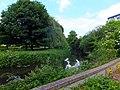 Chelmsford River Cann.jpg