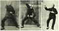 Chen.Zhao.Pi.(1893-1972).18.gener.Tchajti.Chuan.3x.png