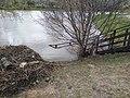 Chermyanka valley park in Bibirevo 20210425 162124.jpg