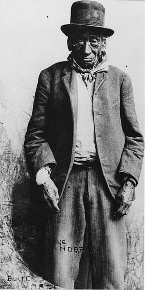 Blue Horse (Lakota leader) - Blue Horse, Pine Ridge Agency, 1908