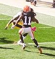Cleveland Browns vs. Pittsburgh Steelers (15527688161).jpg