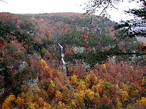 Cloudland Canyon State Park - Cloudland Canyon river