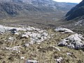 Cnoc a' Mhadaidh slopes - geograph.org.uk - 424362.jpg