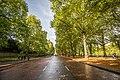 Constitution Hill at Green Park, London (12297888524).jpg