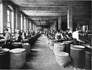 George E. Smith (gambler) - Cork blocking, the initial occupation of Smith, at a Pittsburgh cork factory in the early 1900s.
