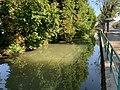 Cours Eau Fossé Enceinte Pont Veyle 1.jpg