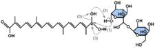 α–crocin formation mechanism