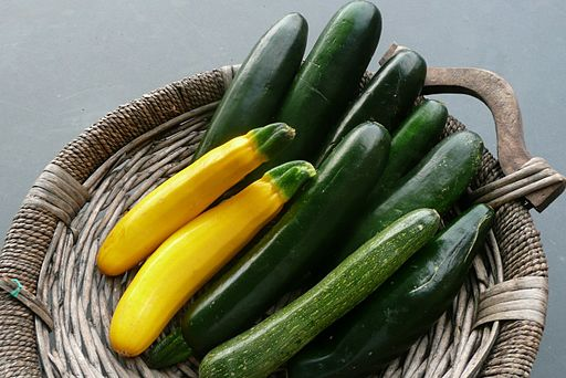 Cucurbita pepo Summer Squash Yellow and Green Zucchini zucchine