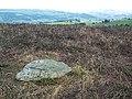 Cup marked rock, Bingley Moor - geograph.org.uk - 44689.jpg