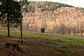 Czerniawa Zdrój - Czerniawska Kopa - panoramio (1).jpg