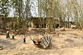 DSC00855 Burma Shan Farm (4679148976).jpg