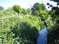 Dagenham Brook.JPG