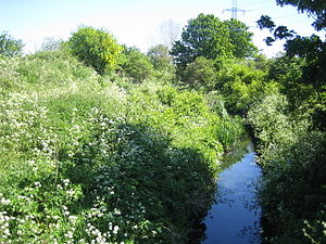 Dagenham Brook -  Dagenham Brook at Leyton