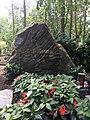 Das Grab von Ulli Herzog.jpg