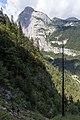 Dead Pine - Molveno (TN) Italy - September 6, 2014 - panoramio.jpg