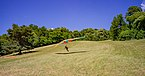 Deltaplano partito Val di Sur a Gardone Riviera Lago di Garda.jpg