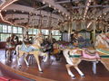 Dentzel Carousel at SF Zoo interior 4.JPG