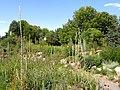 Denver Botanic Gardens - DSC01045.JPG