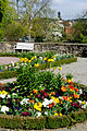 Der Schlosspark Weikersheim im Frühling. 04.jpg
