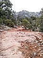 Derrick Trail, Payson, Arizona - panoramio (2).jpg