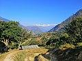 Dhaulagiri Himal.jpg