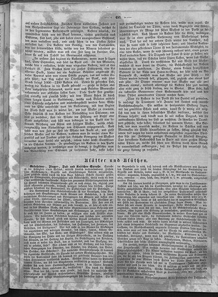 File:Die Gartenlaube (1858) 451.jpg