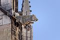 Dijon Cathédrale Saint-Bénigne 23.jpg
