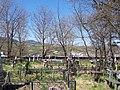 Din cimitir - panoramio.jpg